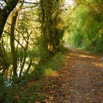 Camel Trail holiday cottages