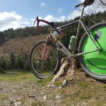 Cardinham woods cycling Cornwall