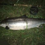 Night fly fishing in Cornwall