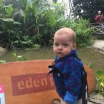 Eden Project family day out