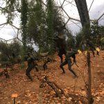 Eden Project Mediterranean Biome