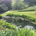 Visit Trebah Cornwall
