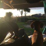 Love Cornwall coastal path