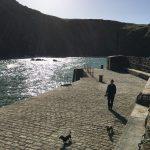 National Trust Mullion Cove